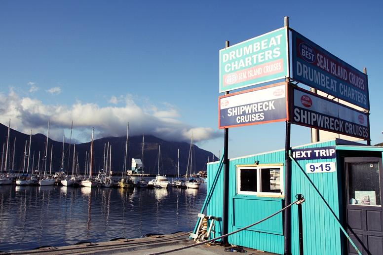 Das Gebäude von Drumbeats Charters, welche Bootstouren zu den Seelöwen in Kapstadt anbieten