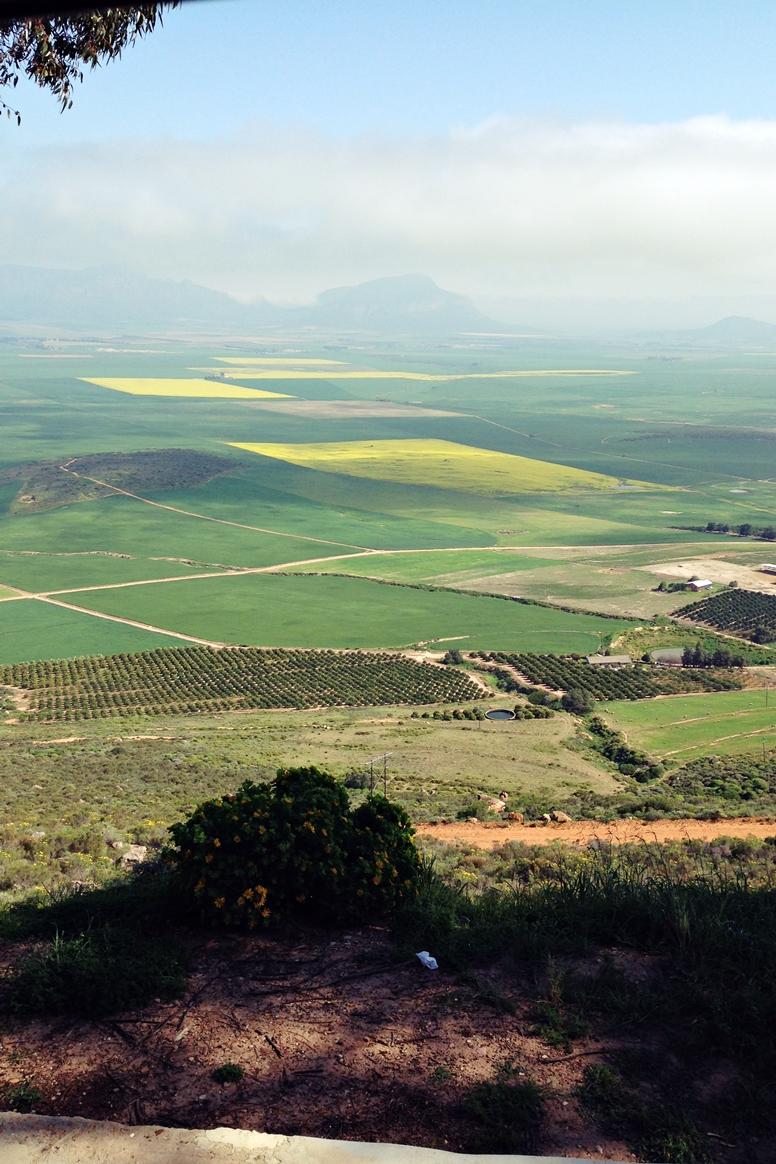 Die grünen Winelands hinter Kapstadt in Richtung Norden