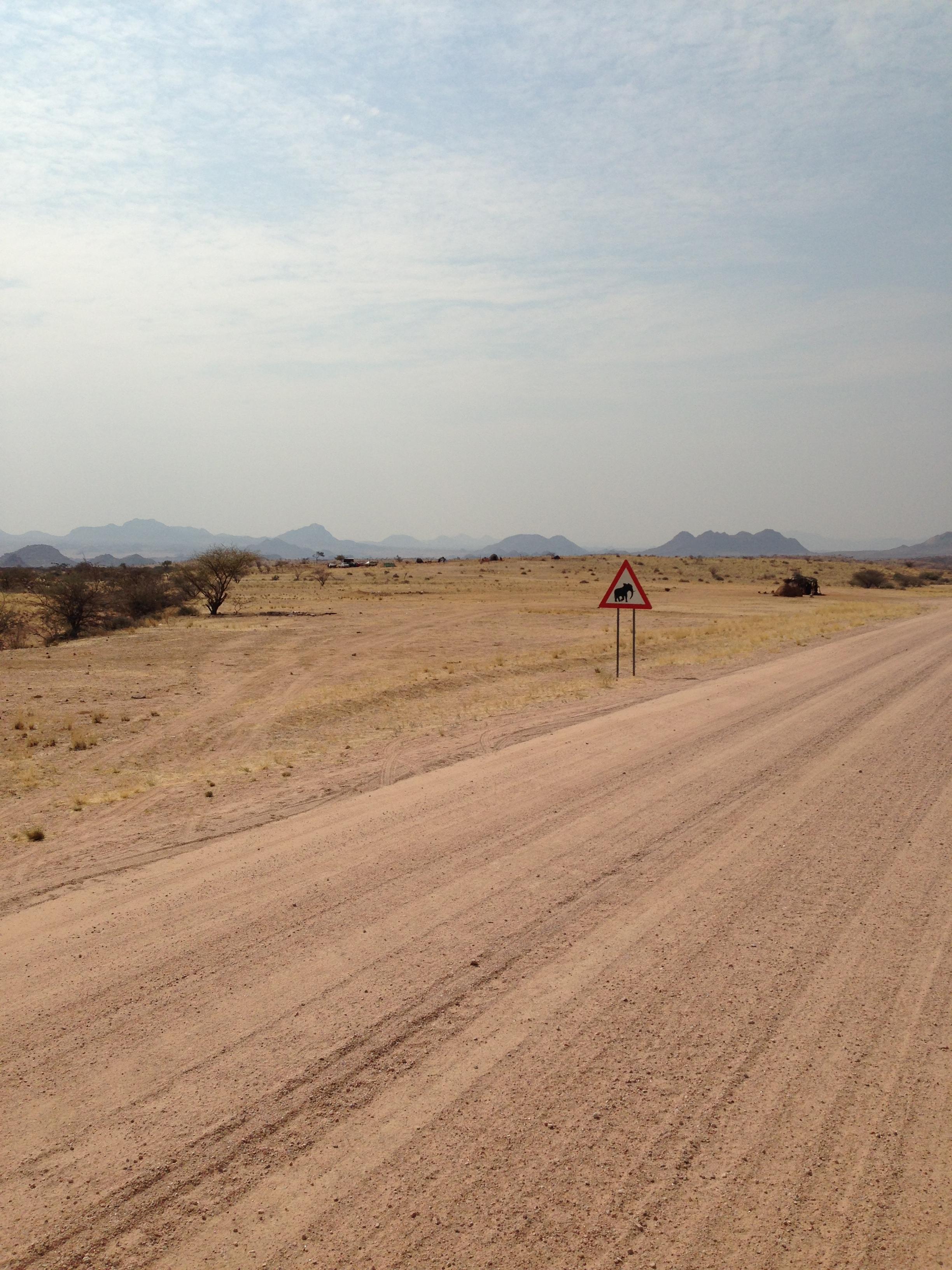 Damaraland Namibia Wüstenelefanten