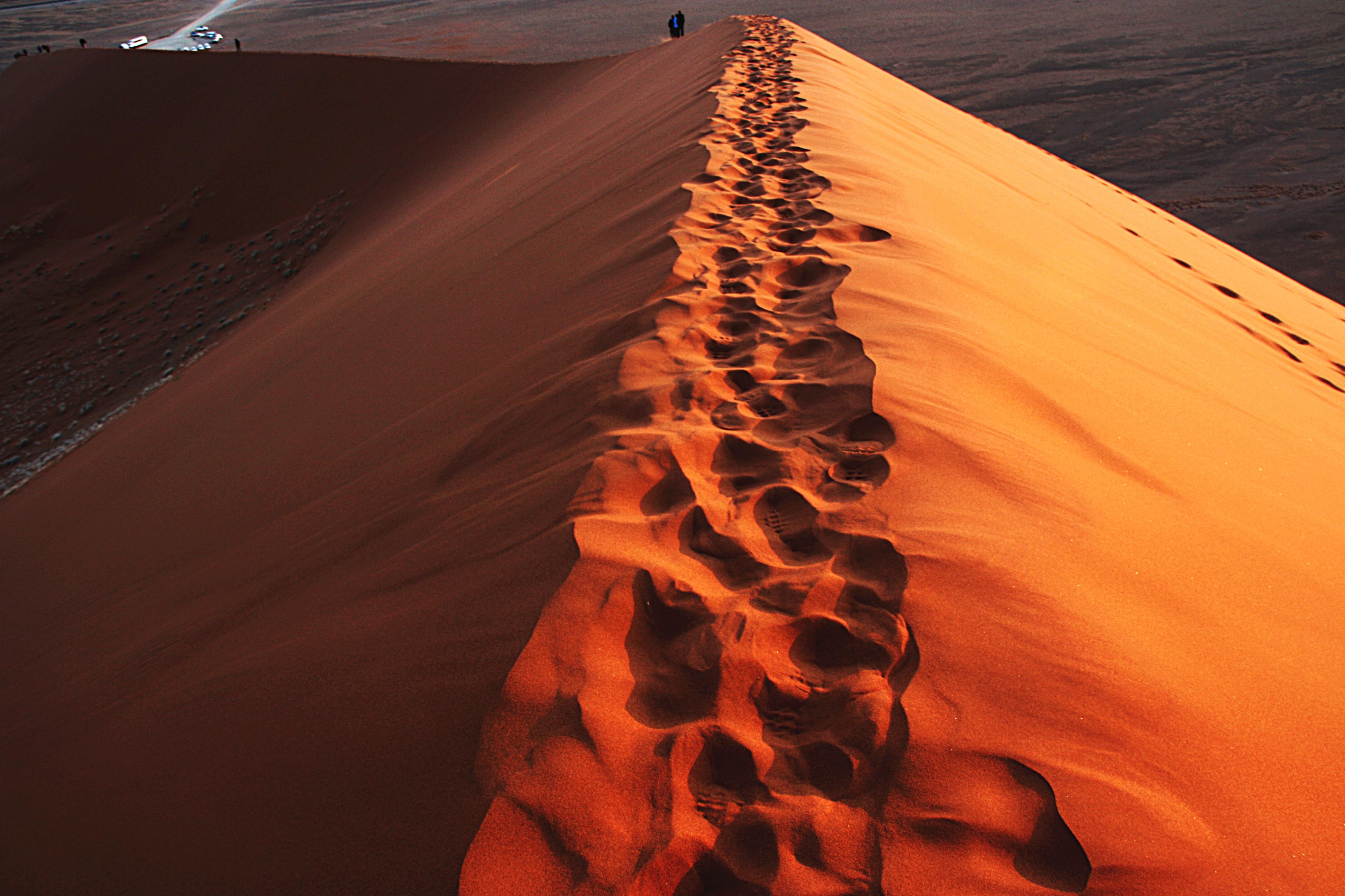 Fußspuren im Wüstensand Namib Namibia
