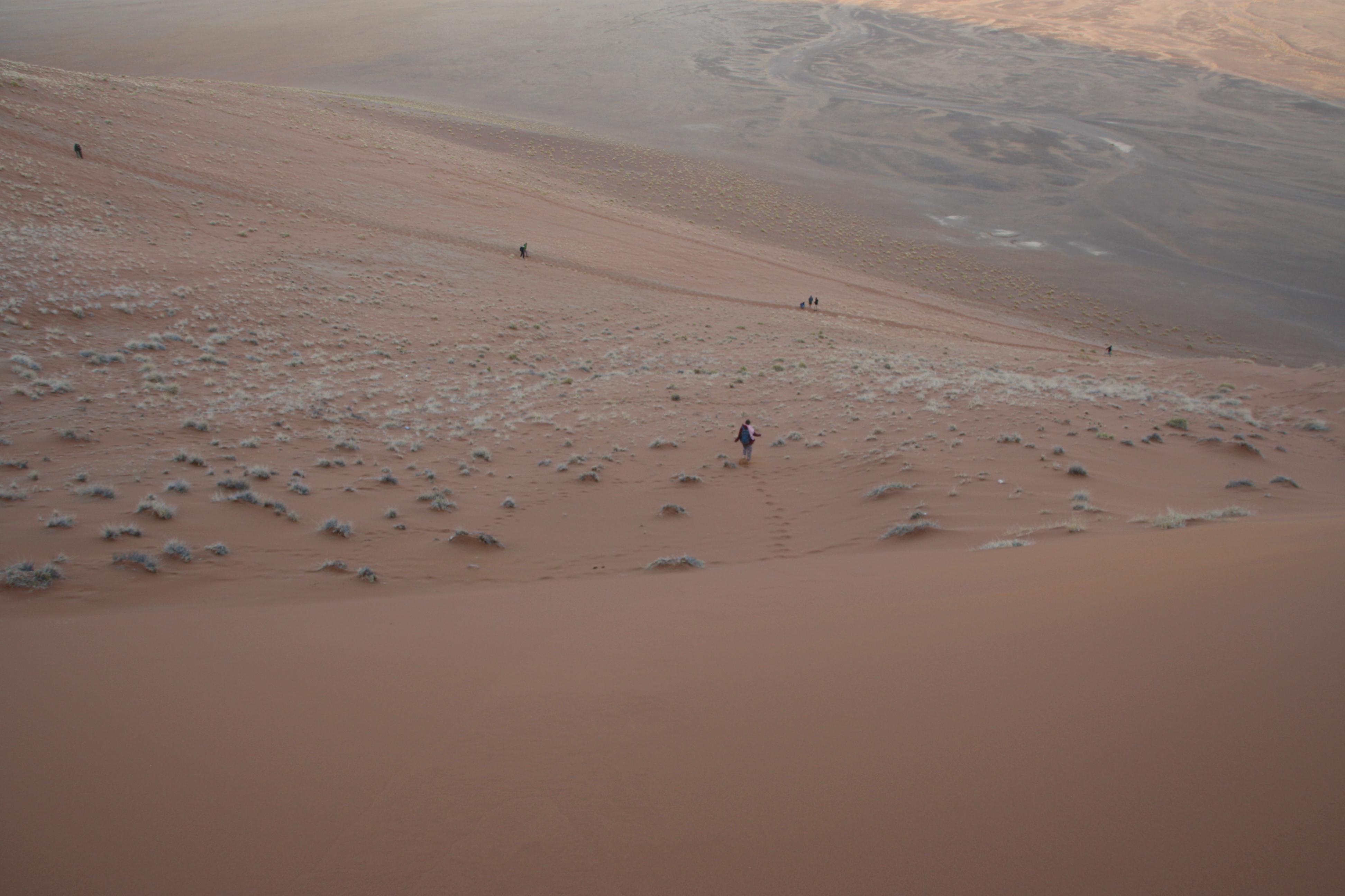 Düne Wüste Namibia Namib