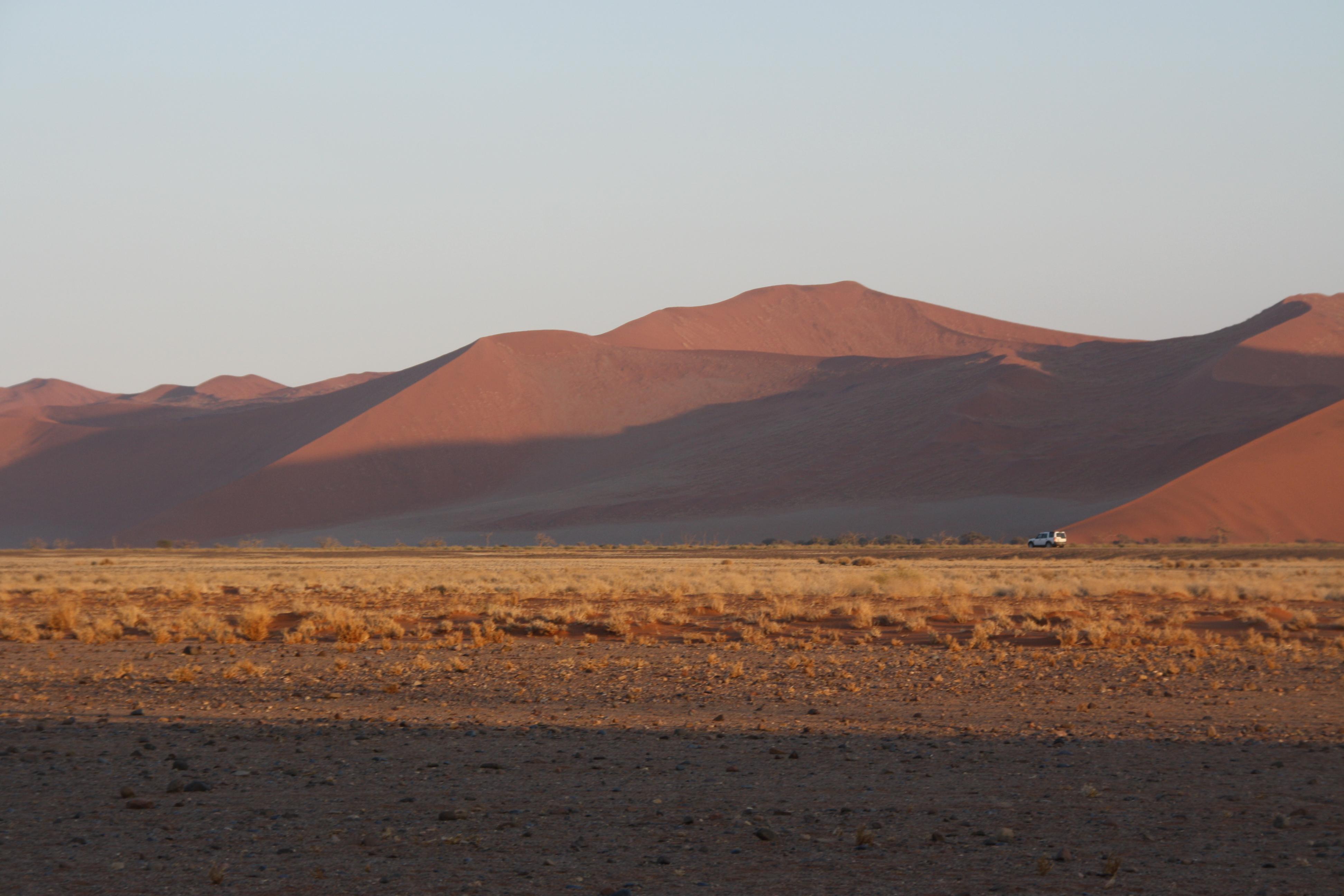 Dünen Wüste Namib Namibia