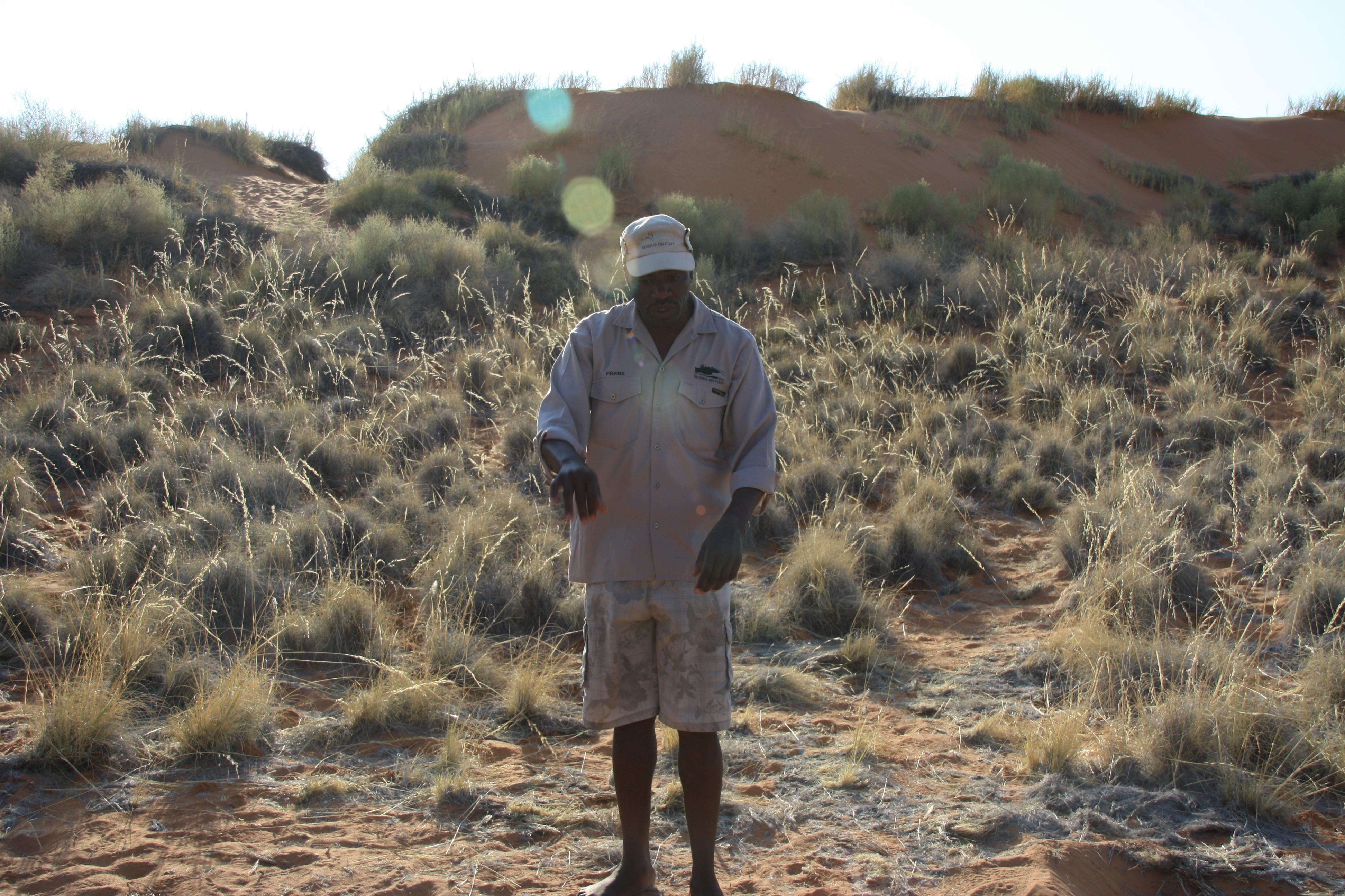 Bushman Wüste Namib Naukluft Namibia