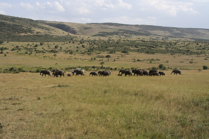 Kenia 2012 131