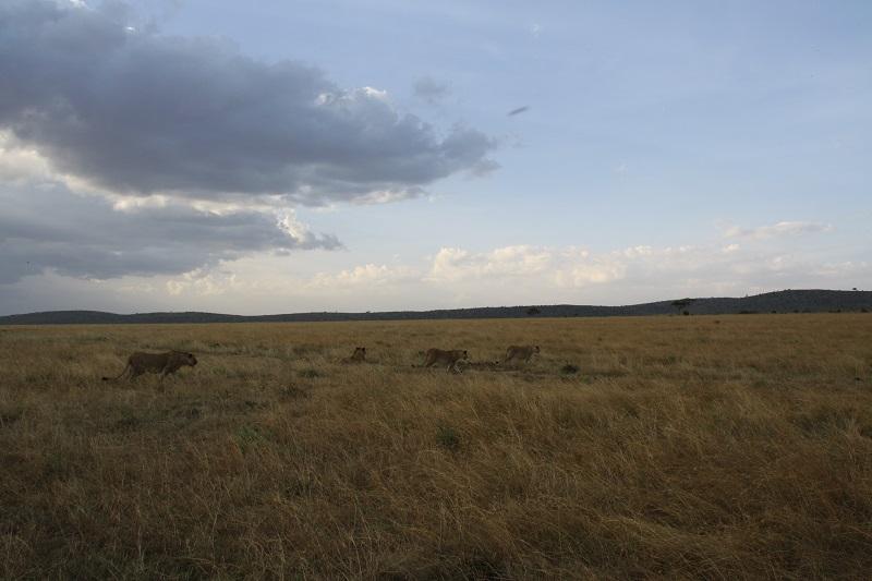 Kenia 2012 220