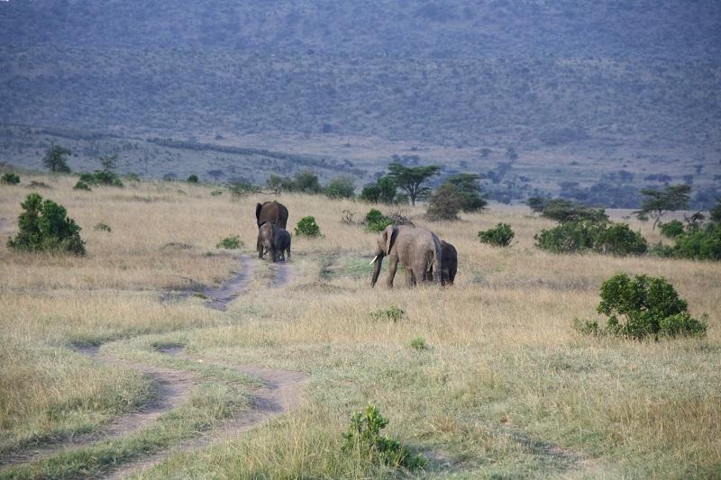 Kenia 2012 227