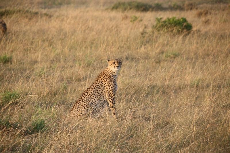 Kenia 2012 345