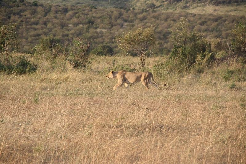 Kenia 2012 356