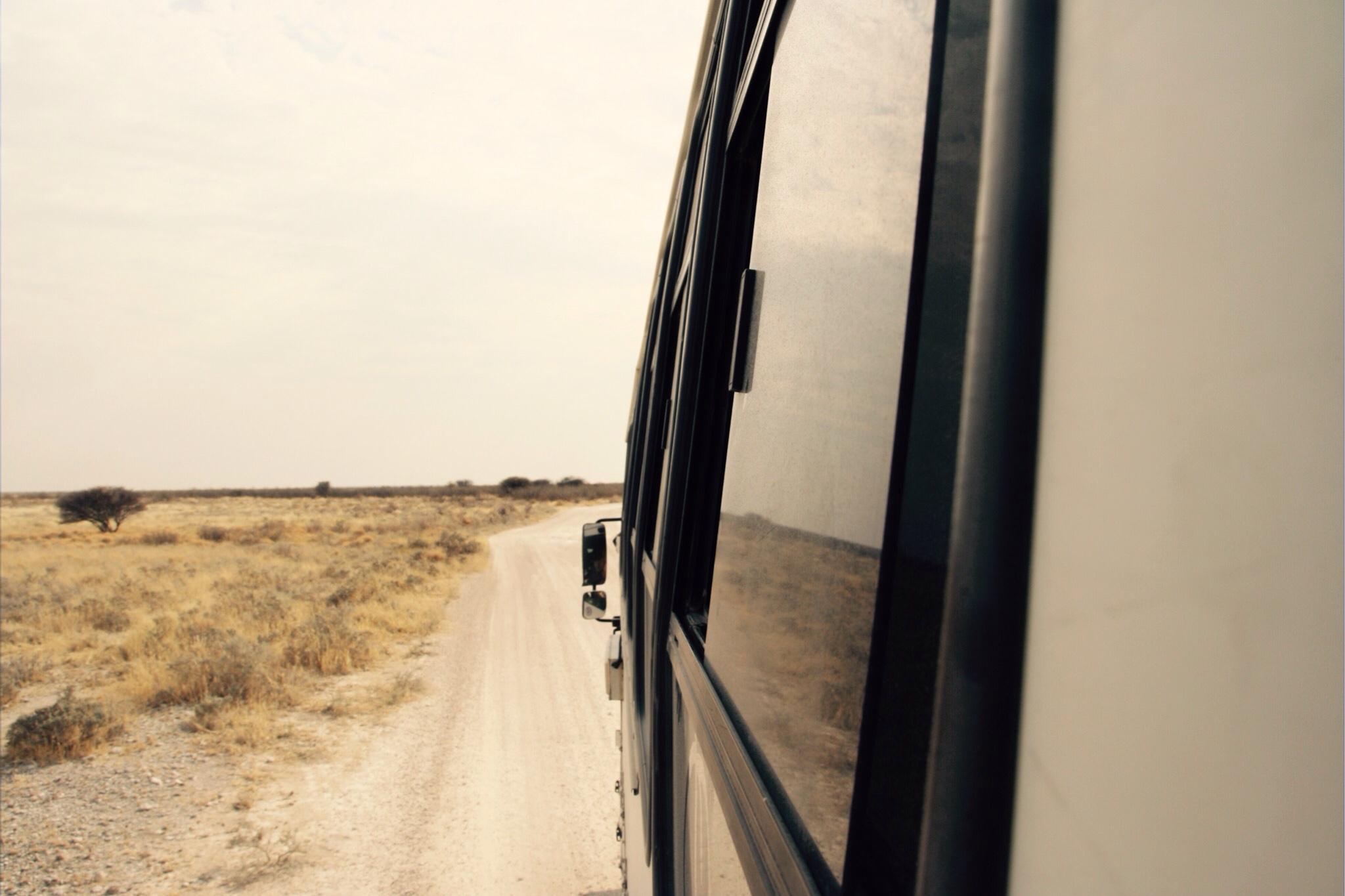 Game Drive, Etosha Nationalpark, Namibia, G-Adventures, Overlanding, Namibia, Afrika