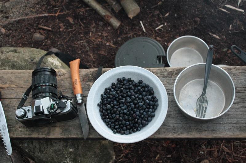 Kamera, Messer und gepflückte Blaubeeren liegen für das Abendessen am Lagerfeuer bereit