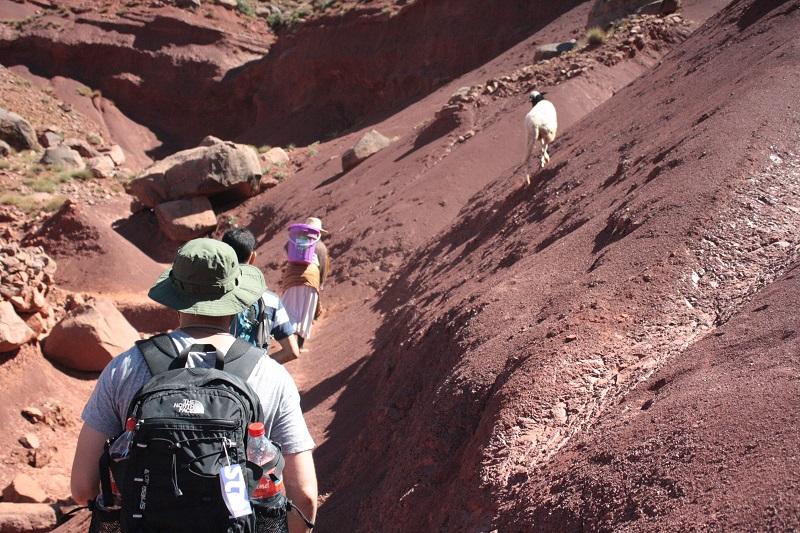 Wandergesellschaft im Hohen Atlas Gebirge von Marokko