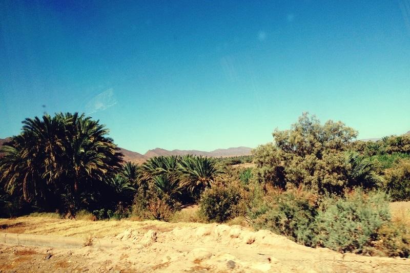 Oase, Marokko, Zagora