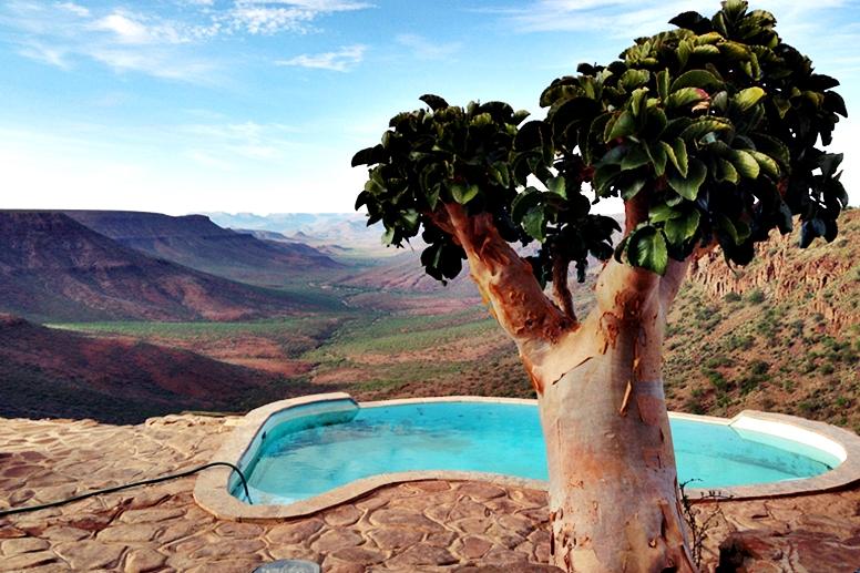 Pool und Baum der Grootberg Lodge mit Blick über das Damaraland in Namibia