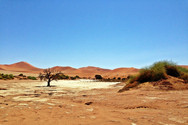 Dünen der Namib Wüste in Namibia