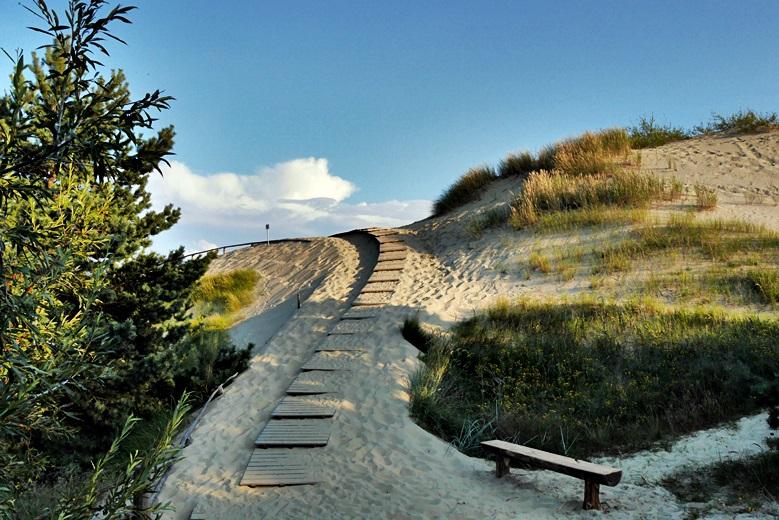 Holzweg über die Dünen der Kurischen Nehrung bei Nida, eine der Sehenswürdigkeit in Litauen