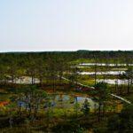 Lahemaa Nationalpark: eine Nacht am nördlichsten Punkt Estlands