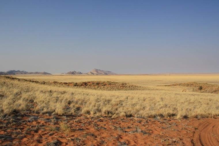 Blick über die Dünen im Namib Rand Nature Reserve im Hintergrund die Berge auf unserem guided Bushmans Walk
