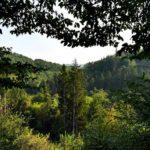 Das Lengeltal: eine Wanderung in Nordhessen
