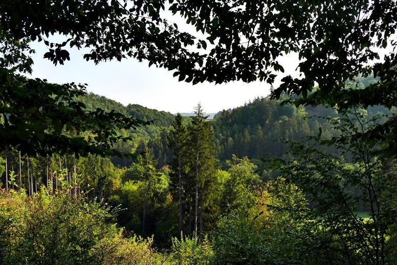 Blick in das grüne Lengeltal vom Hugenotten-und Waldenserpfad in Nordhessen bei Louisendorf