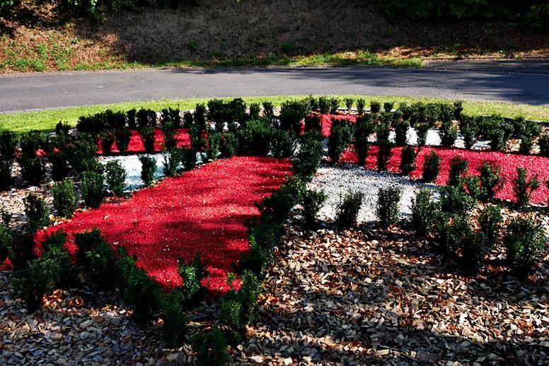 Hugenottenkreuz mit Blumen dargestellt makieren den Hugenotten-und Waldenserpfad