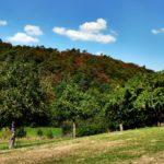 Meine Lieblingsplätze in der GrimmHeimat Nordhessen