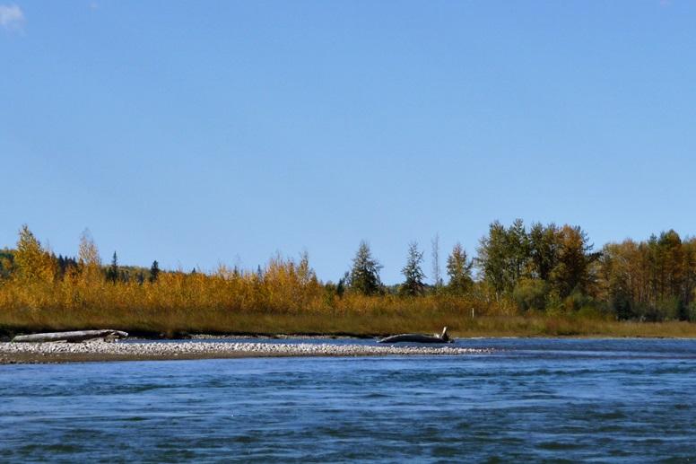 Blick auf den Saskatchewan River mit einer weiten Ebene dahinter