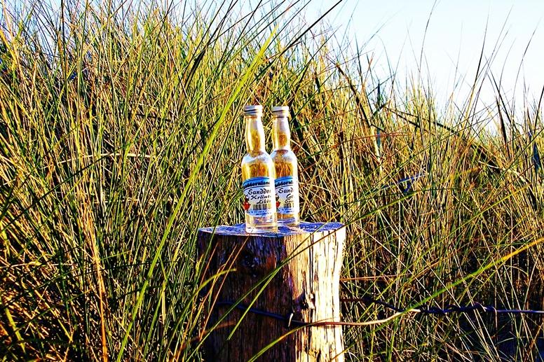 Leere Schnapsflasche im Dünengürtel von Hiddensee