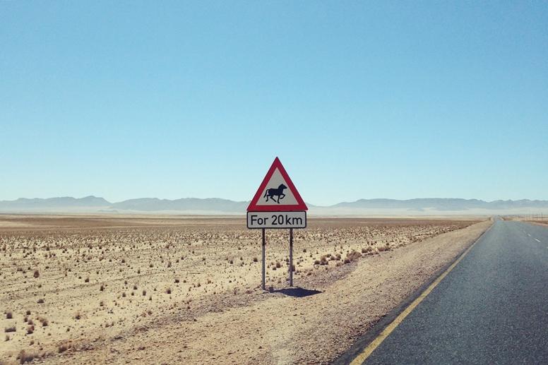 Verkehrszeichen in Namibia, welches vor wilden Pferden warnt