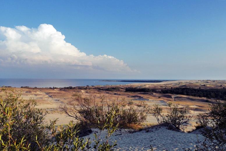 Sanddünen der Kurischen Nehrung bei Nidda