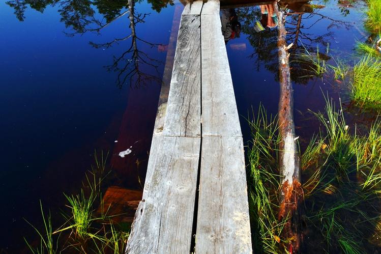 Moor im Lahemaa Nationalpark in Estland