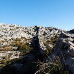 6.Etappe des GR221: von Rosmarin, Schafen und einem Abschied