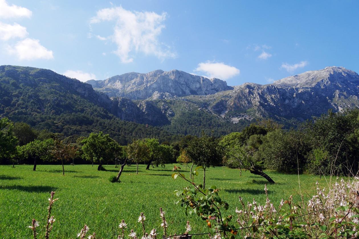 Berge und grüne Wiesen im Vall d´En Marc auf der 7.Etappe des GR221