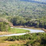 Auf Safari im Hluhluwe-Umfolozi National Park