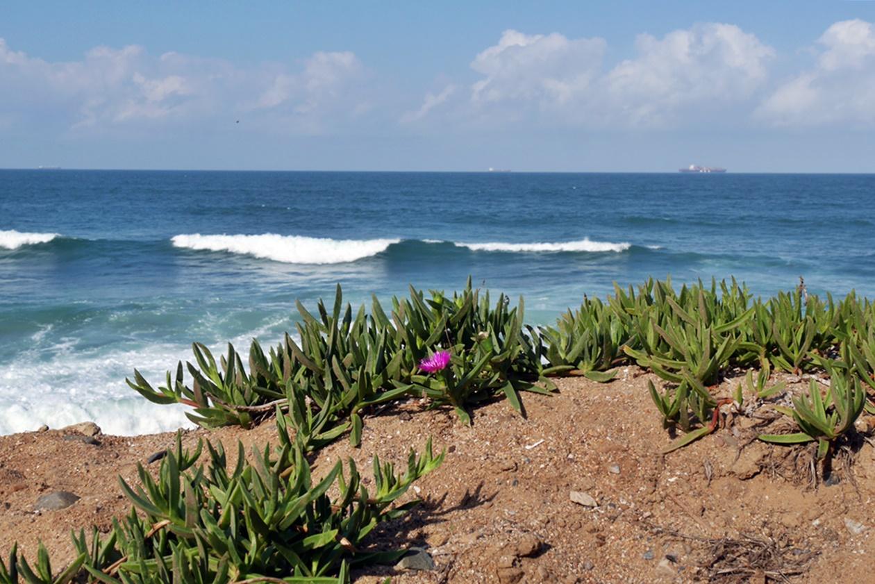 Blick vom Strand Umdlotis auf den Indischen Ozean in Südafrika