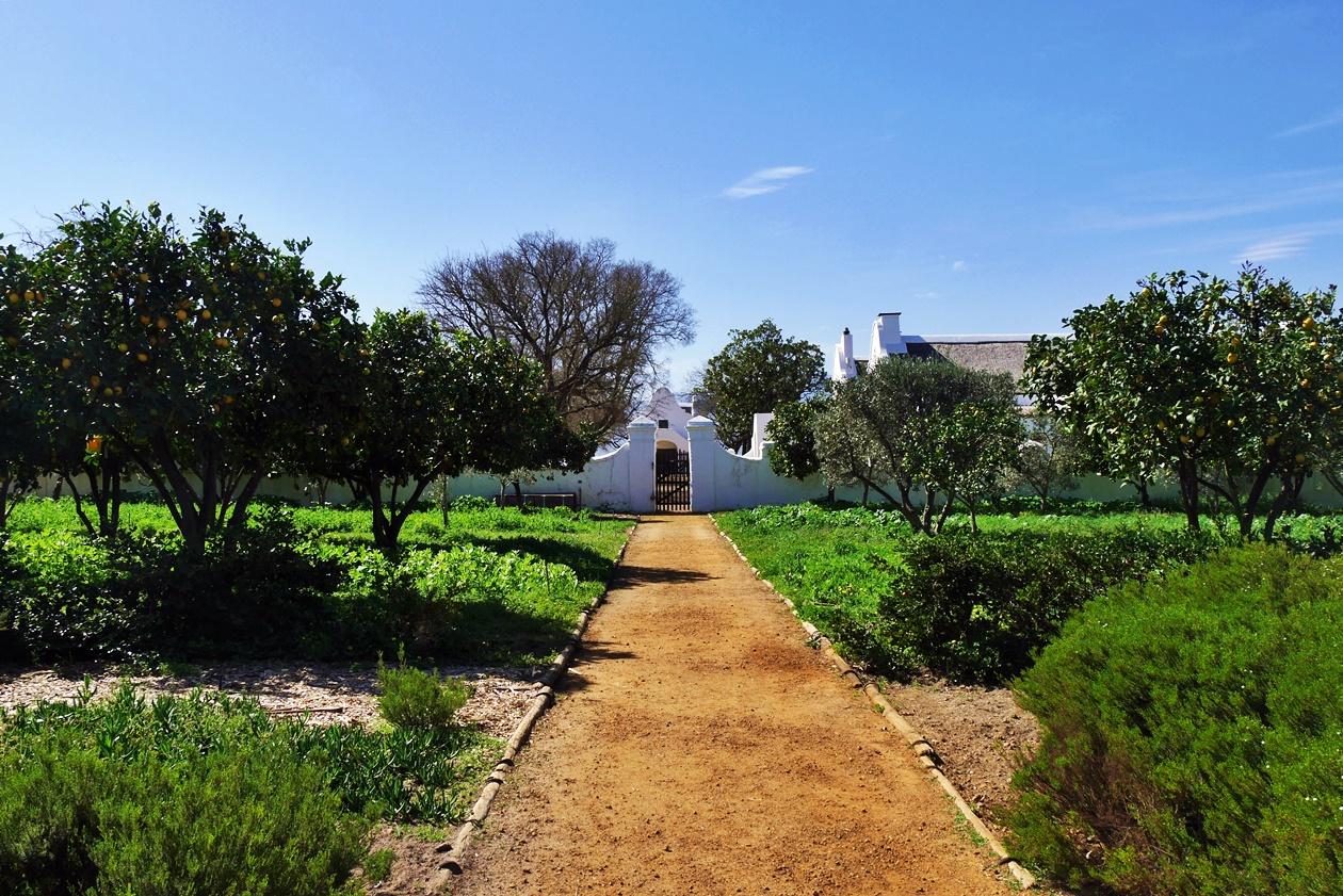 Weg in Babylonstoren auf unserem Wochenendausflug von Kapstadt
