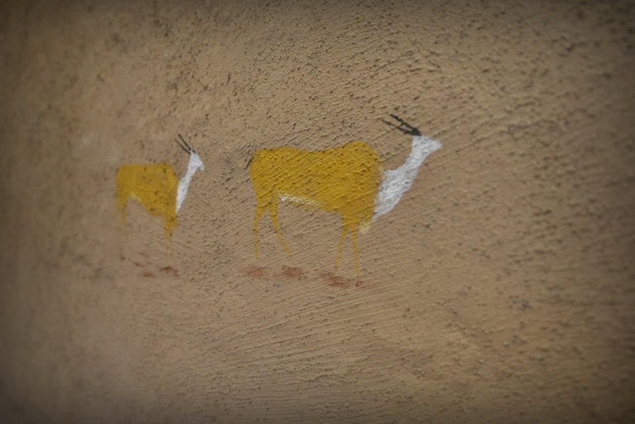 Wandmalereien in !Khwa ttu auf unserem Wochenendausflug von Kapstadt