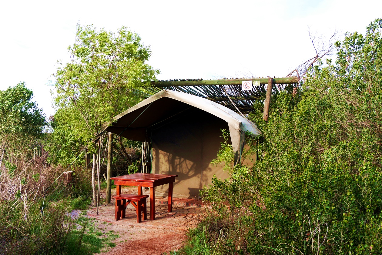 Bush Camp Zelt von !Khwa ttu auf unserem Wochenendausflug von Kapstadt