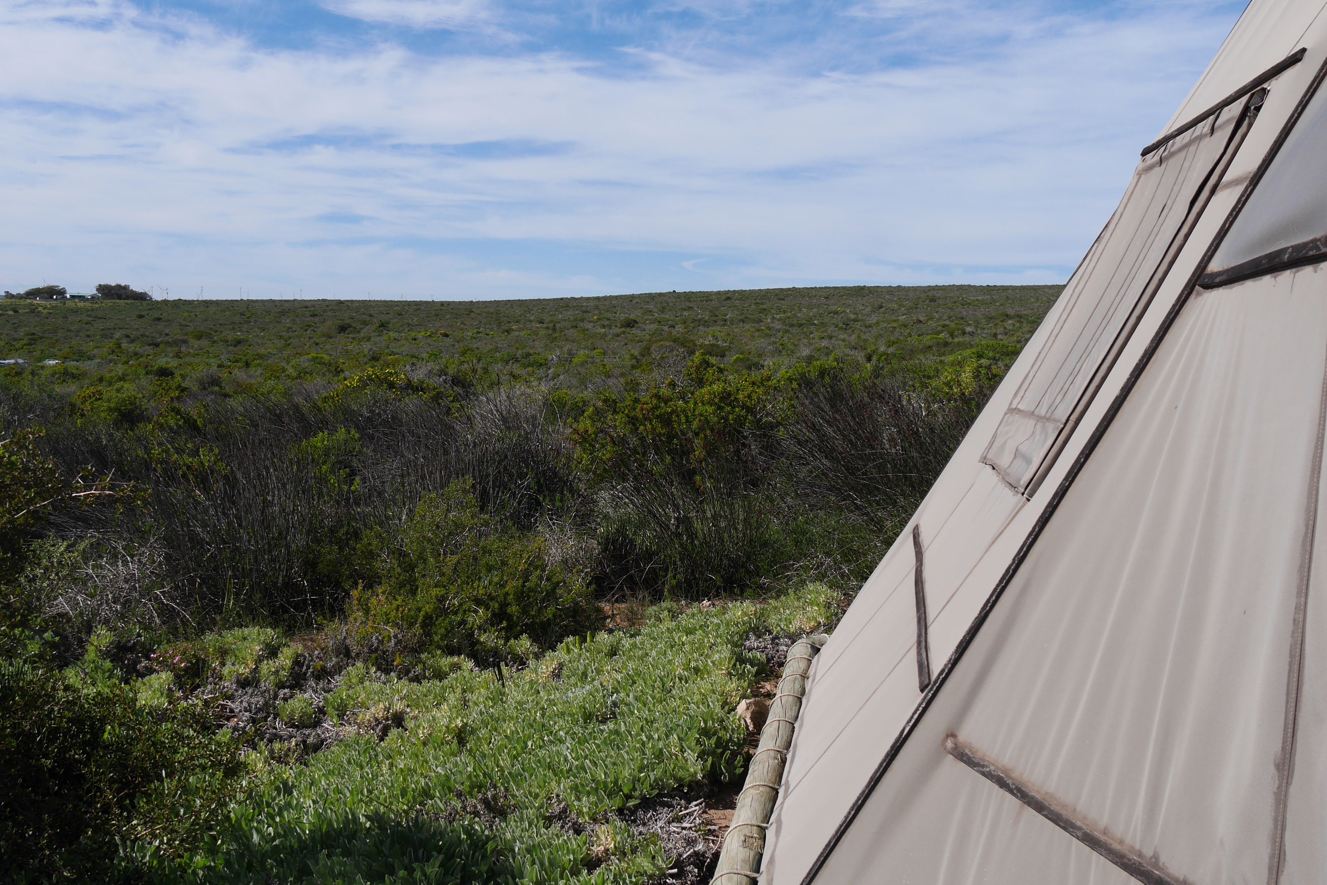 Landschaft um das Farr Out Guesthouse in Paternoster bei unserem Wochenendausflug von Kapstadt