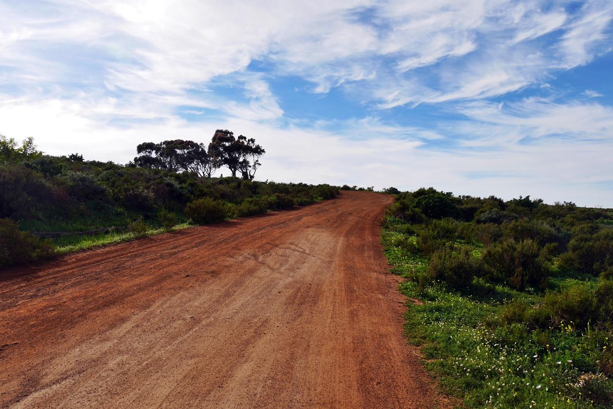 Zufahrtsstraße zu !Khwa ttu auf unserem Wochenendausflug von Kapstadt