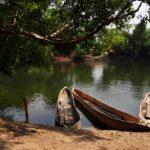 Eine Insel im Sambesi: Bovu Island