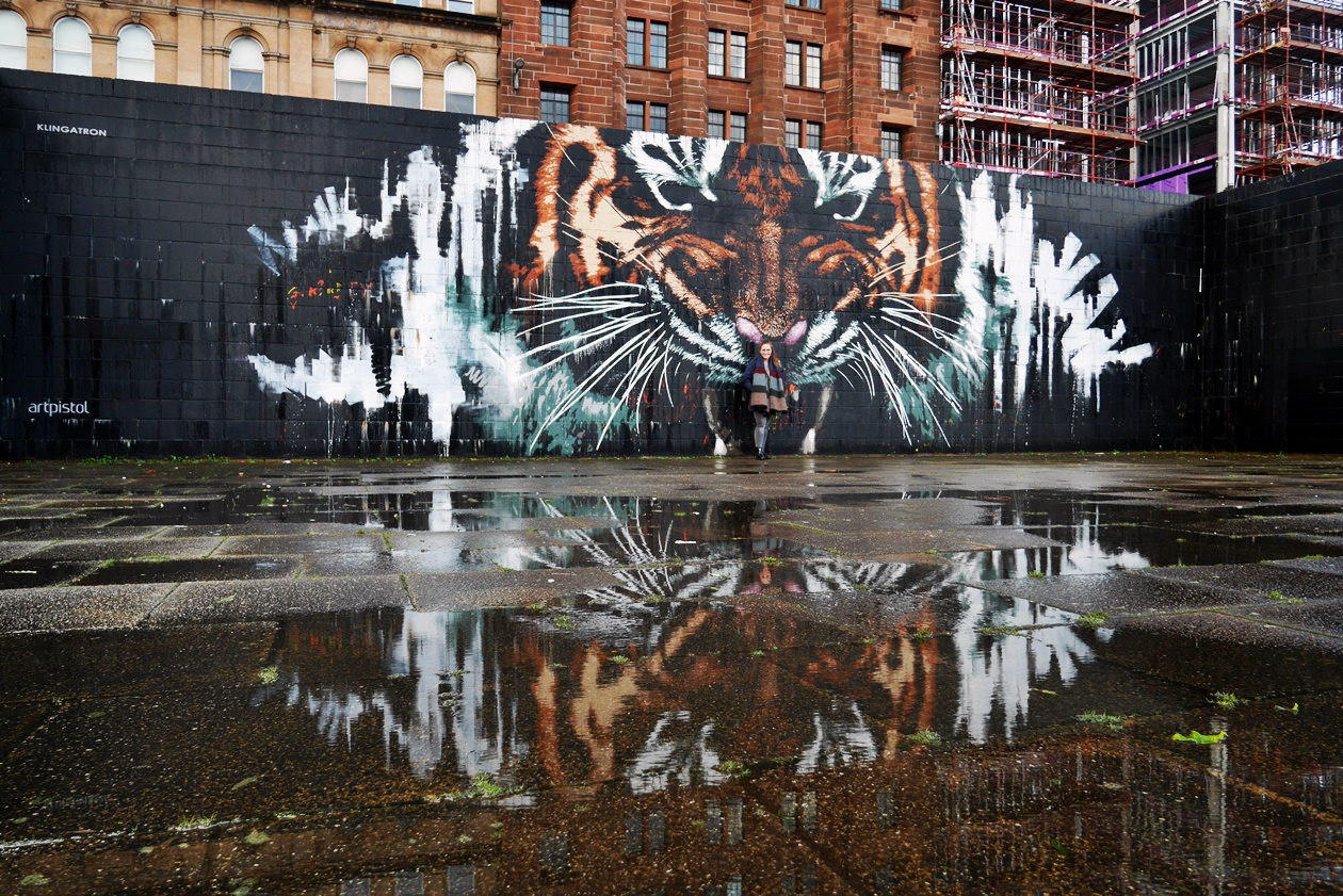Streetart Tour in Glasgow