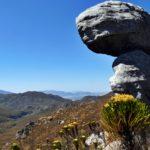 Aktivitäten rund um Kapstadt: Cape Canopy Tour