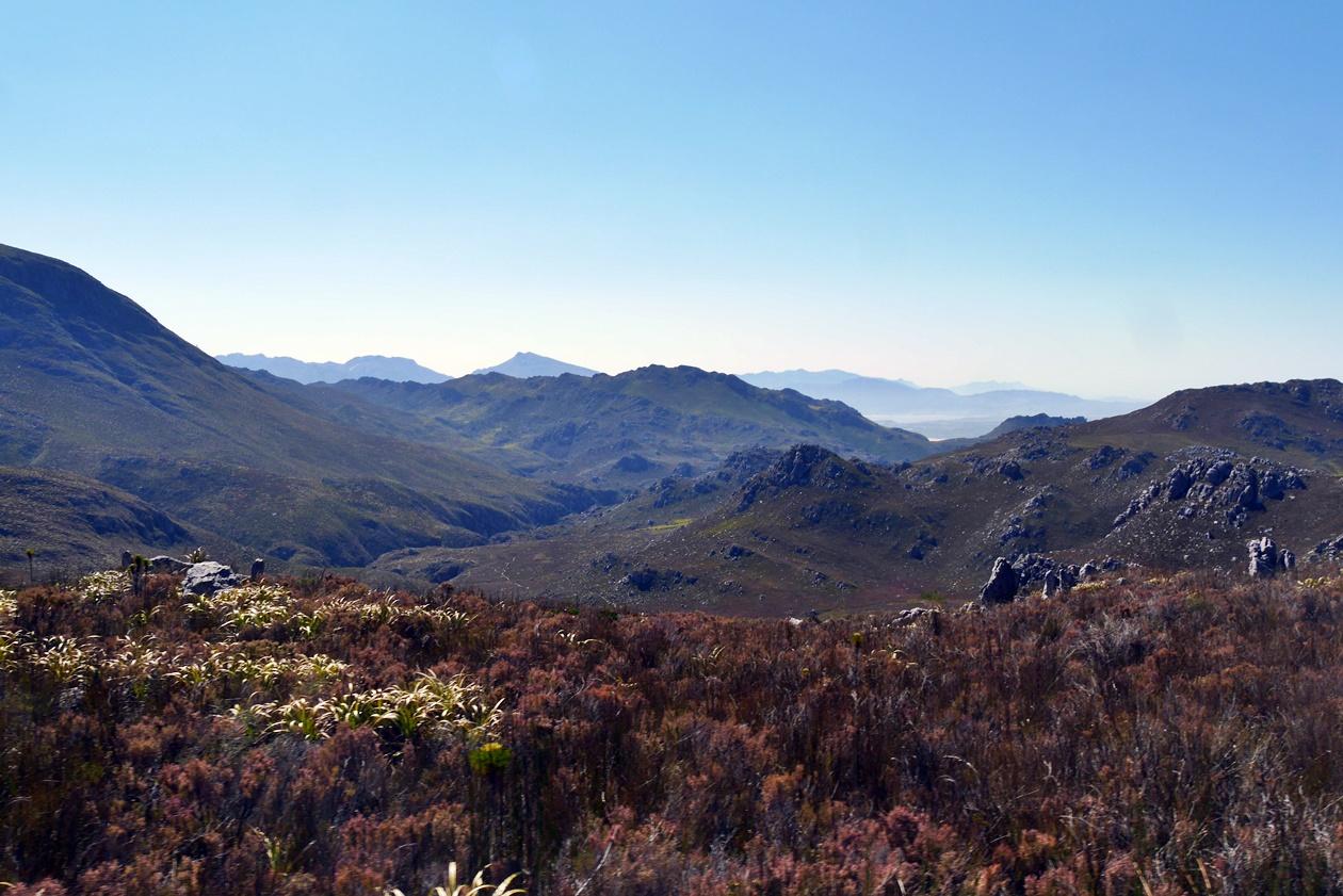 Aussicht Cape Canopy Tour