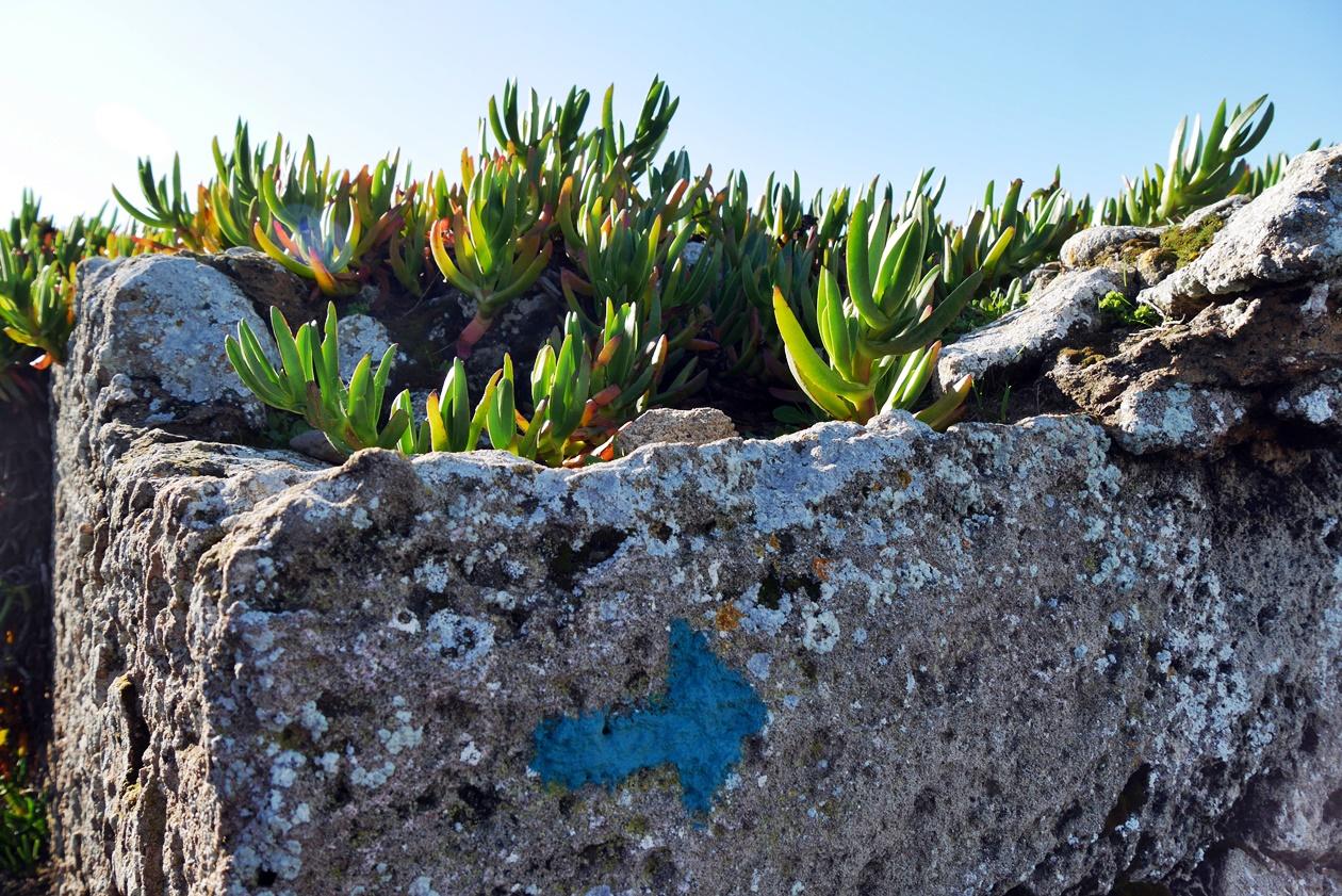 Wegmarkierung beim Wandern auf der Rota Vicentina