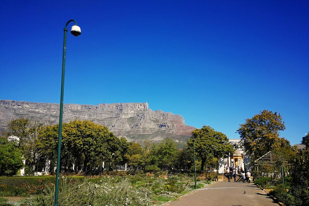 Blick auf den Tafelberg aus dem Companys Garden in Kapstadt