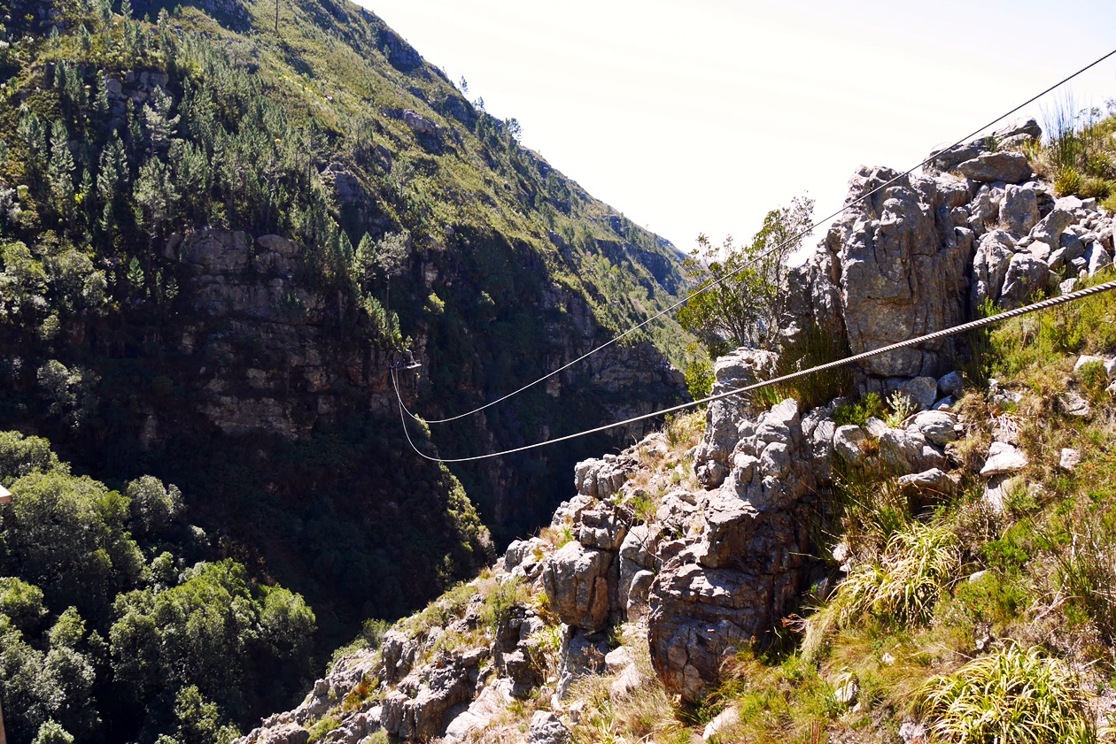 Ziplining mit Cape Canopy im Hottentots Holland Nature Reserve bei Kapstadt
