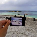 Fotoparade – Best of 1. Halbjahr 2018