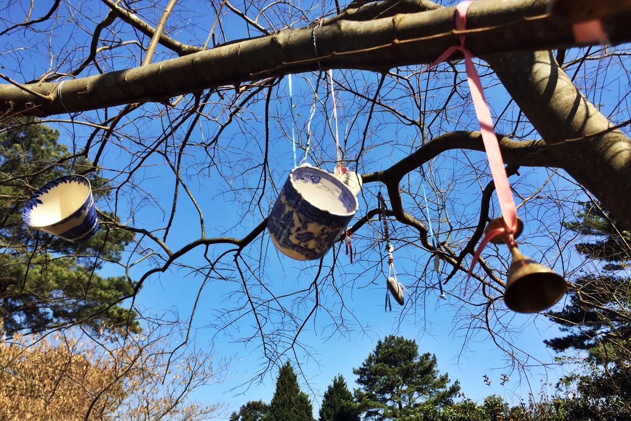 Tassen die in einem Baum hängen in den Midland Meanders in Südafrika