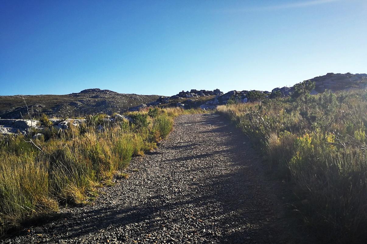 Schotterpiste auf unserer Wanderung im Silvermine Nature Reserve