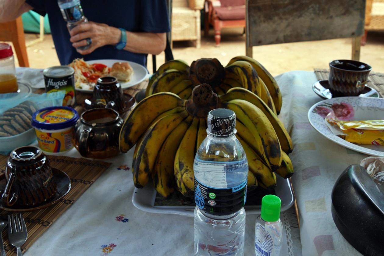 Gedeckter Tisch mit Bananen und verschlossenem Wasser, welches bei Gesunheit auf Reisen unerlässlich ist